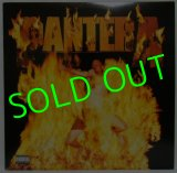 PANTERA/ Reinventing the Steel [LP]