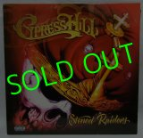 CYPRESS HILL/ Stoned Raiders [2LP]