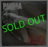 PANTERA/ Valgar Display Of Power[LP]