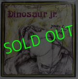 DINOSAUR JR./ You're Living All Over Me[LP]