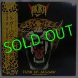 高崎晃/ Tusk Of Jaguar[LP]