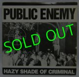 "PUBLIC ENEMY/ Hazy Shade of Criminal [12""]"