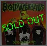 BOLLWEEVILS/ Weevilive[LP]