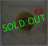 WHITESNAKE/ Same[LP]