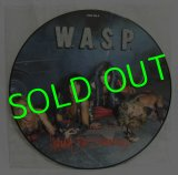 W.A.S.P./ I Wanna Be Somebody(Limited Picture Disc)[12'']