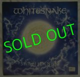 WHITESNAKE/ Still Of The Night[12'']