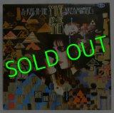 SIOUXSIE&THE BANSHEES/ A Kiss In The Dreamhouse[LP]