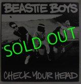 BEASTIE BOYS/ Check Your Head[2LP]