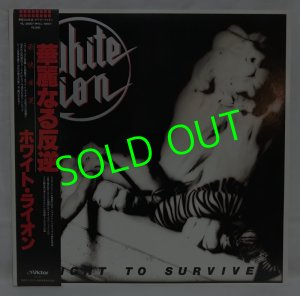 画像1: WHITE LION/ Fight To Survive[LP]